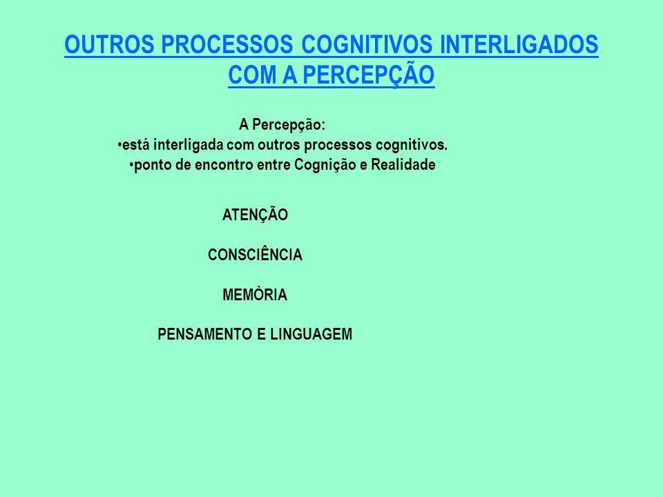 OUTROS PROCESSOS COGNITIVOS INTERLIGADOS COM A PERCEPÇÃO