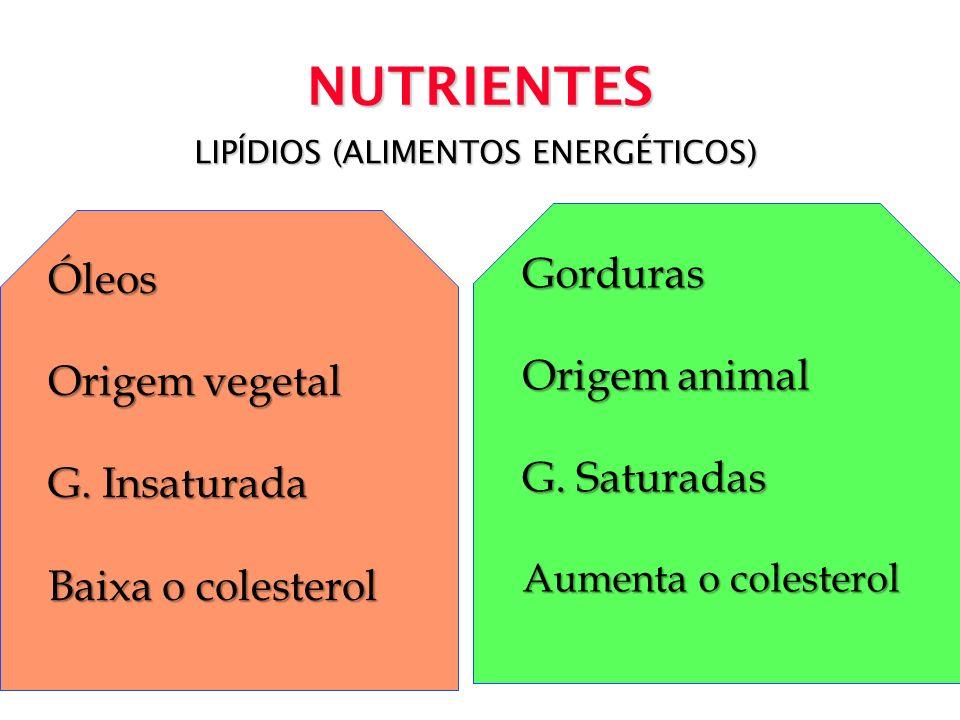 LIPÍDIOS (ALIMENTOS ENERGÉTICOS)