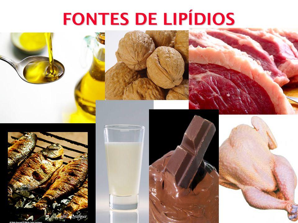 FONTES DE LIPÍDIOS