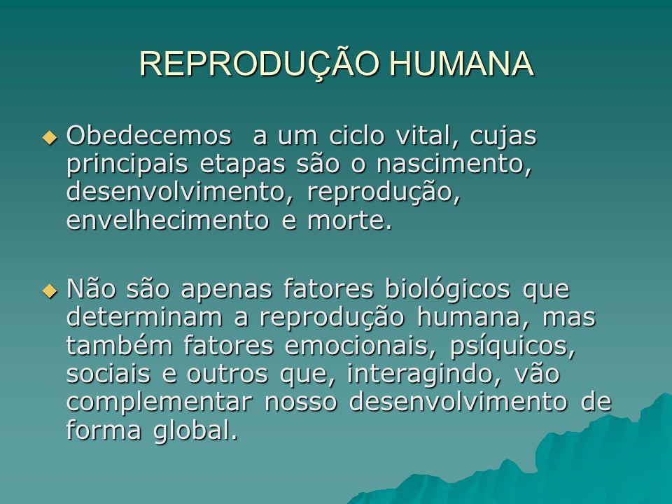 REPRODUÇÃO HUMANA Obedecemos a um ciclo vital, cujas principais etapas são o nascimento, desenvolvimento, reprodução, envelhecimento e morte.