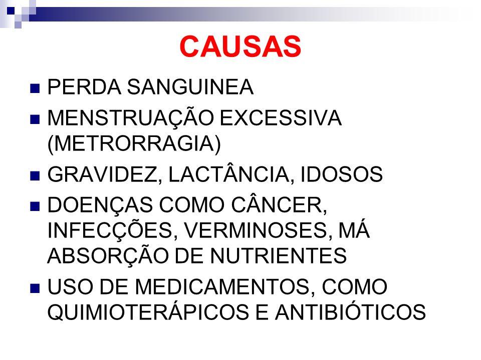 CAUSAS PERDA SANGUINEA MENSTRUAÇÃO EXCESSIVA (METRORRAGIA)