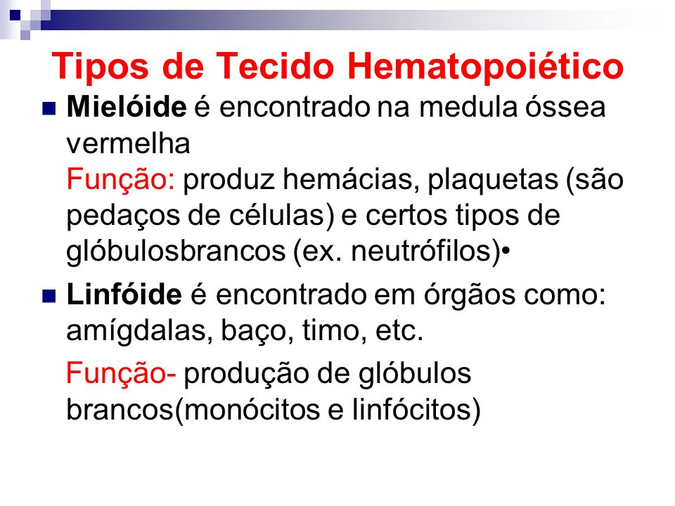 Tipos de Tecido Hematopoiético