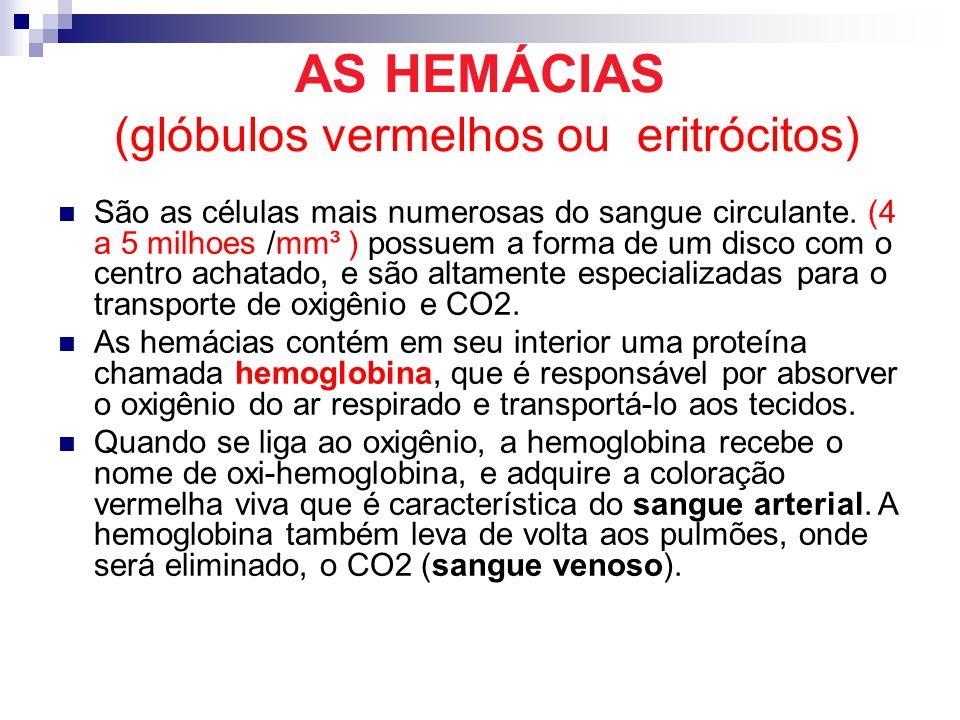 AS HEMÁCIAS (glóbulos vermelhos ou eritrócitos)