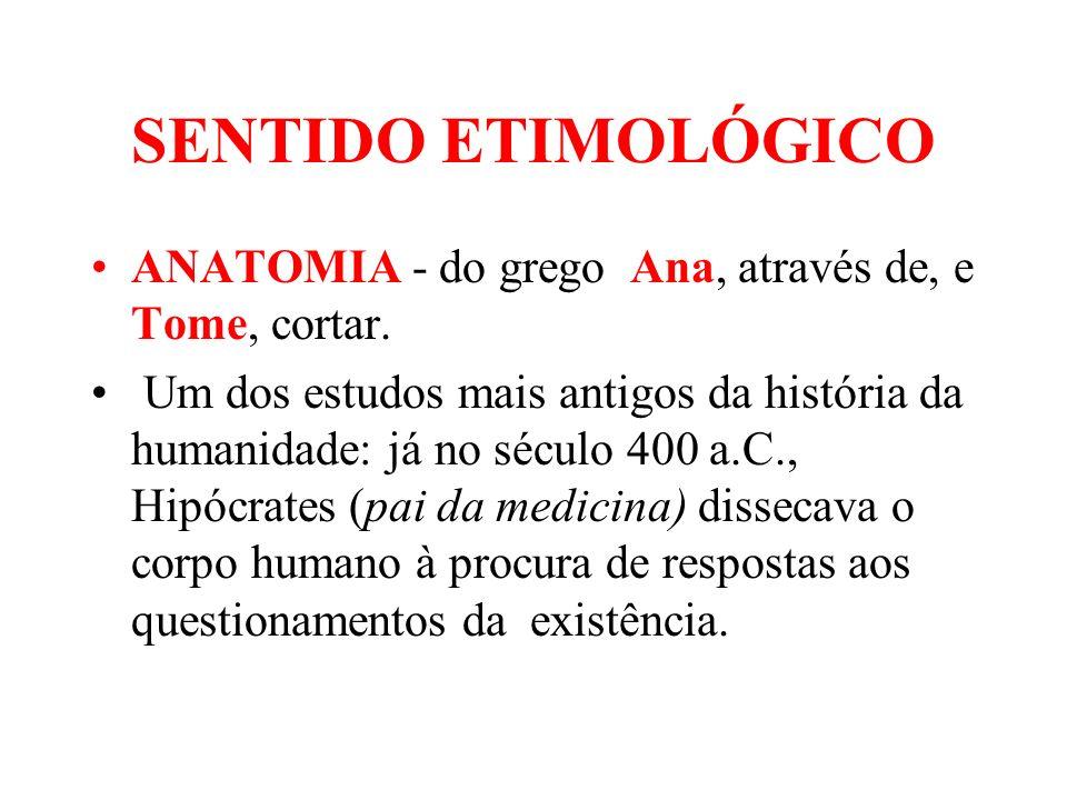 SENTIDO ETIMOLÓGICO ANATOMIA - do grego Ana, através de, e Tome, cortar.