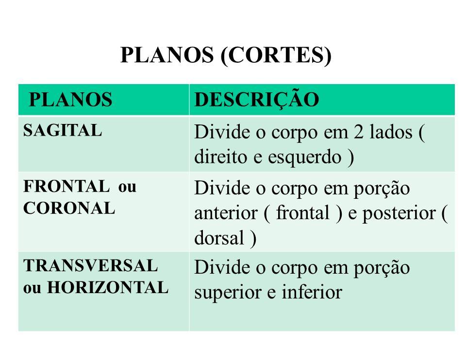 PLANOS (CORTES) PLANOS DESCRIÇÃO