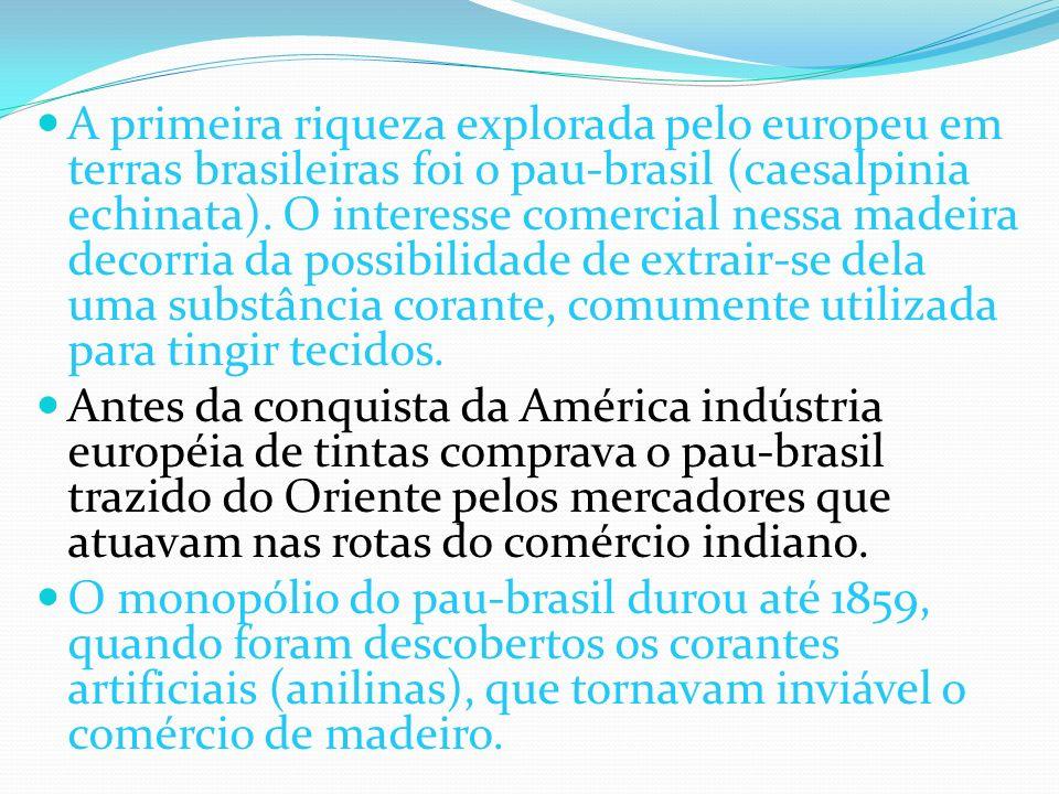 A primeira riqueza explorada pelo europeu em terras brasileiras foi o pau-brasil (caesalpinia echinata). O interesse comercial nessa madeira decorria da possibilidade de extrair-se dela uma substância corante, comumente utilizada para tingir tecidos.