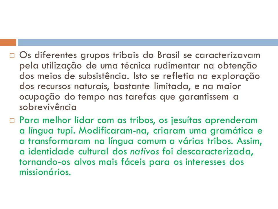Os diferentes grupos tribais do Brasil se caracterizavam pela utilização de uma técnica rudimentar na obtenção dos meios de subsistência. Isto se refletia na exploração dos recursos naturais, bastante limitada, e na maior ocupação do tempo nas tarefas que garantissem a sobrevivência