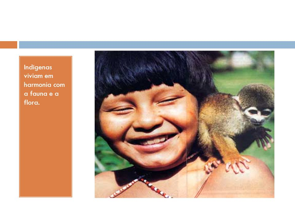 Indígenas viviam em harmonia com a fauna e a flora.