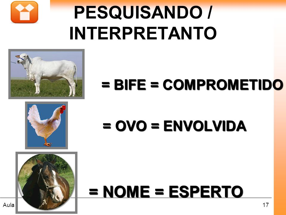 PESQUISANDO / INTERPRETANTO