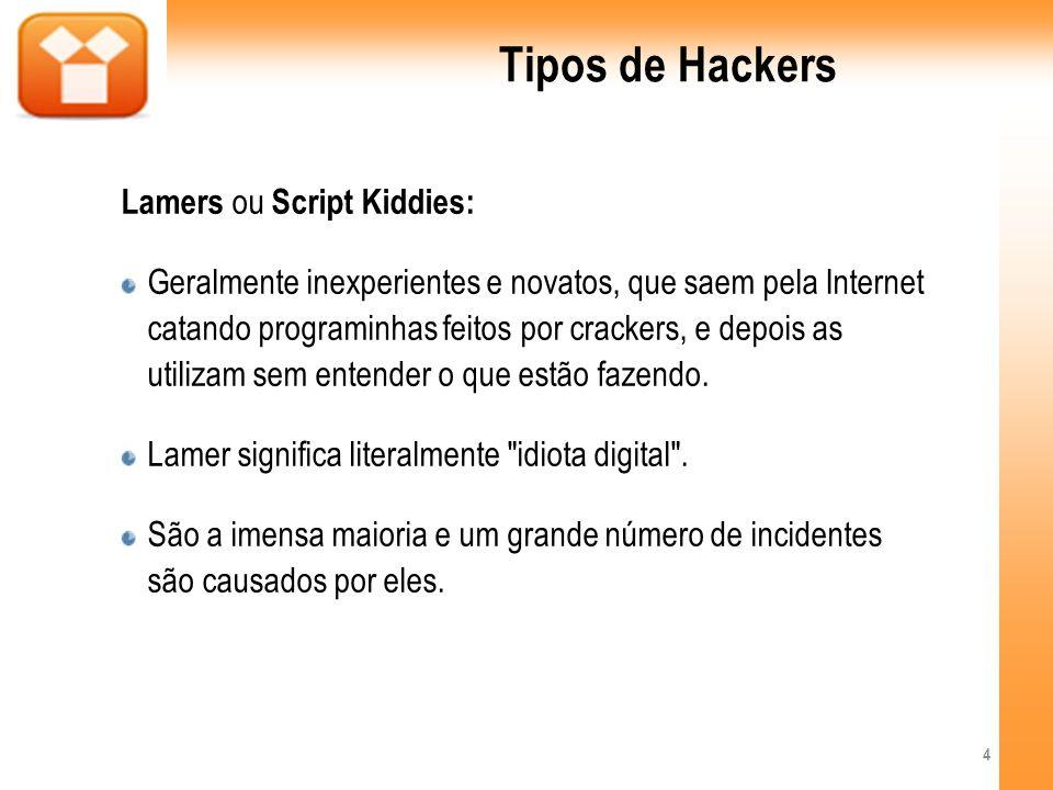 Tipos de Hackers Lamers ou Script Kiddies: