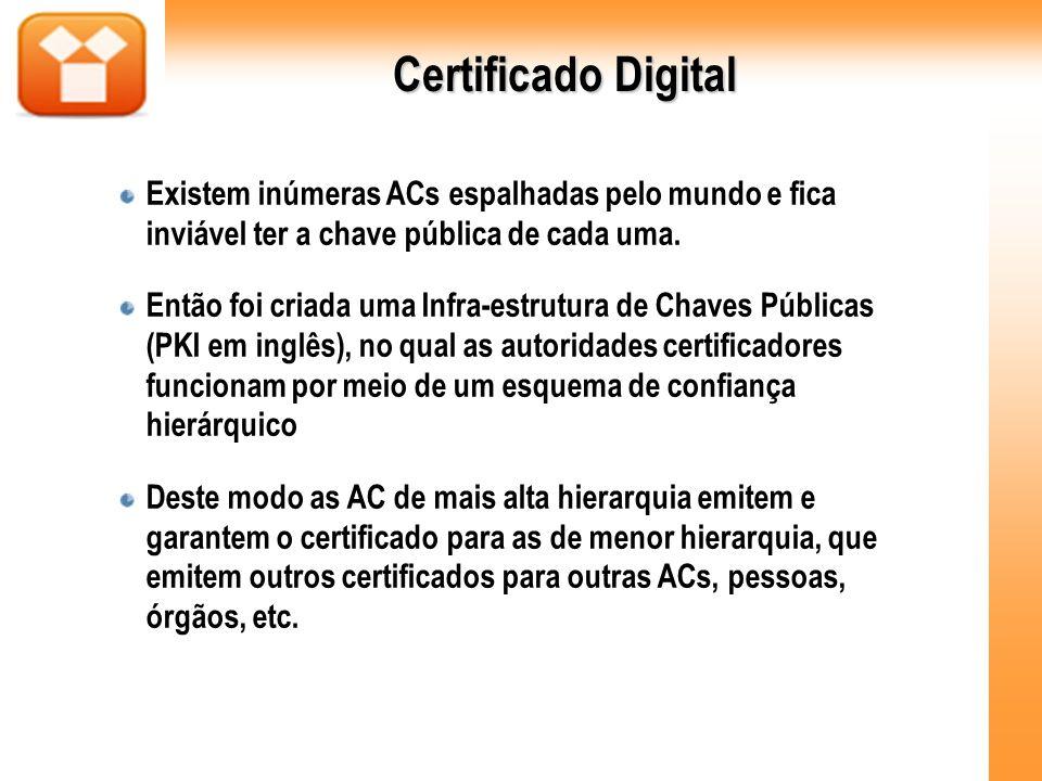 Certificado Digital Existem inúmeras ACs espalhadas pelo mundo e fica inviável ter a chave pública de cada uma.