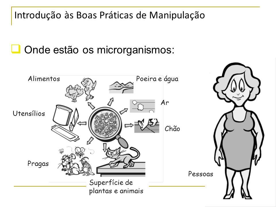 Onde estão os microrganismos: