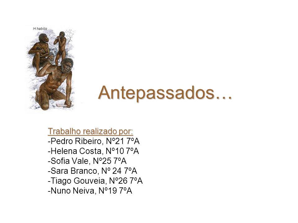 Antepassados… Trabalho realizado por: Pedro Ribeiro, Nº21 7ºA