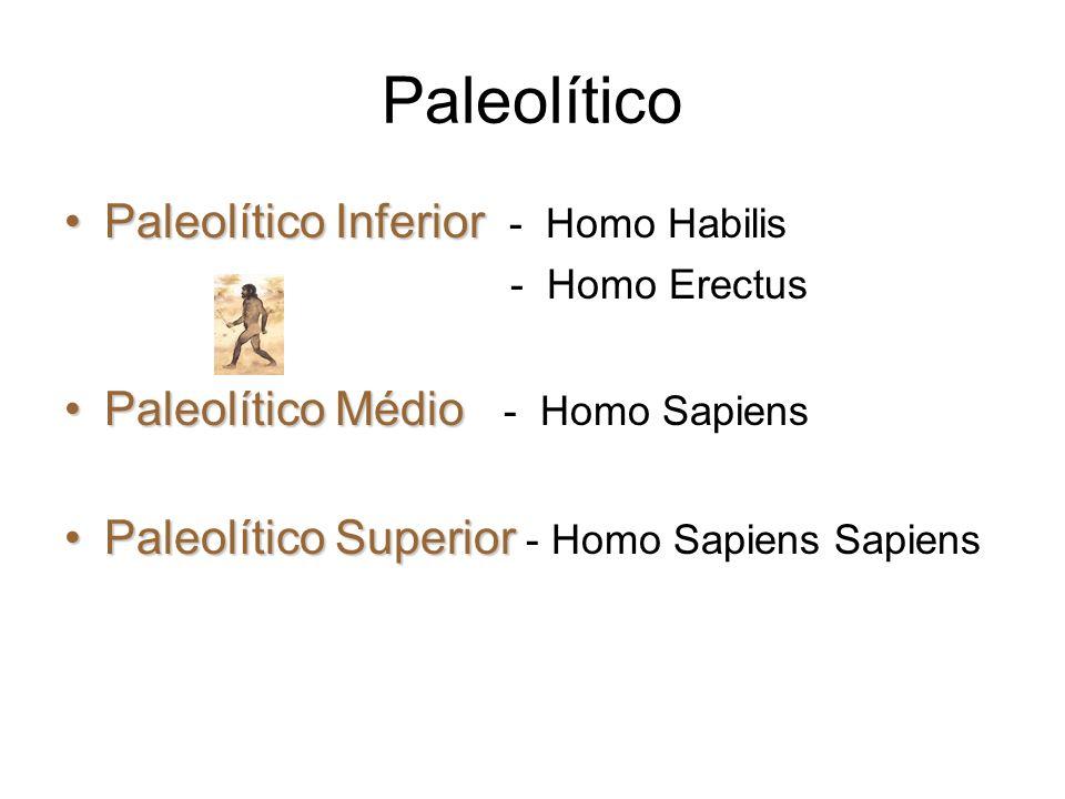 Paleolítico Paleolítico Inferior - Homo Habilis