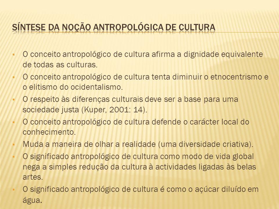 Síntese da noção antropológica de cultura