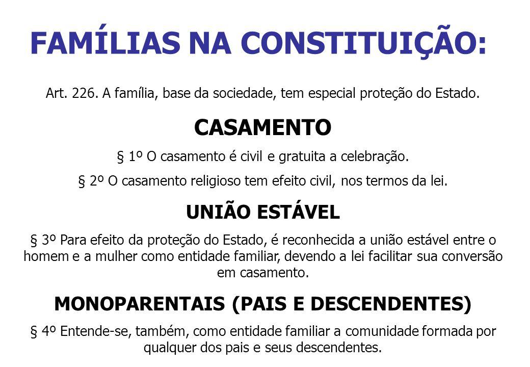 FAMÍLIAS NA CONSTITUIÇÃO:
