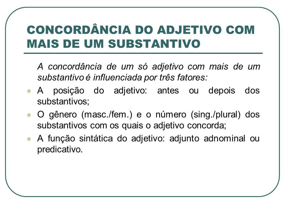 CONCORDÂNCIA DO ADJETIVO COM MAIS DE UM SUBSTANTIVO