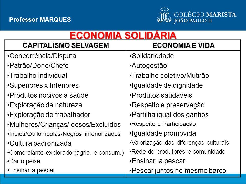 ECONOMIA SOLIDÁRIA CAPITALISMO SELVAGEM ECONOMIA E VIDA