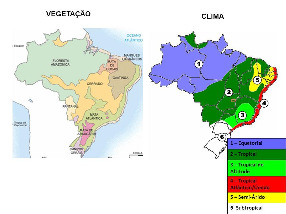 VEGETAÇÃO CLIMA 1 – Equatorial 2 – Tropical 3 – Tropical de Altitude