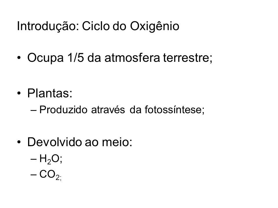Introdução: Ciclo do Oxigênio