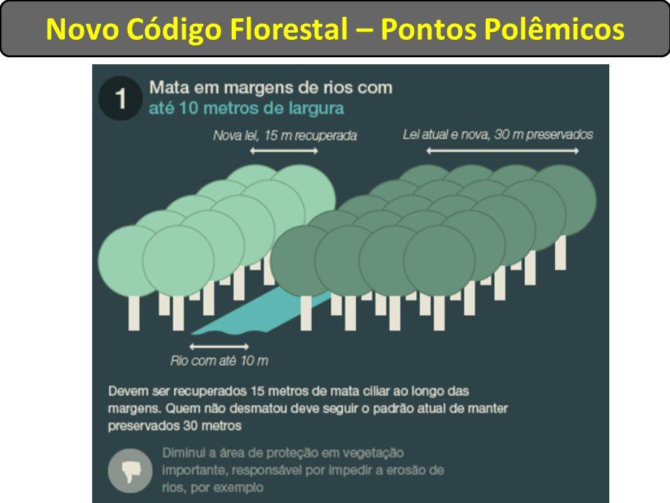 Novo Código Florestal – Pontos Polêmicos