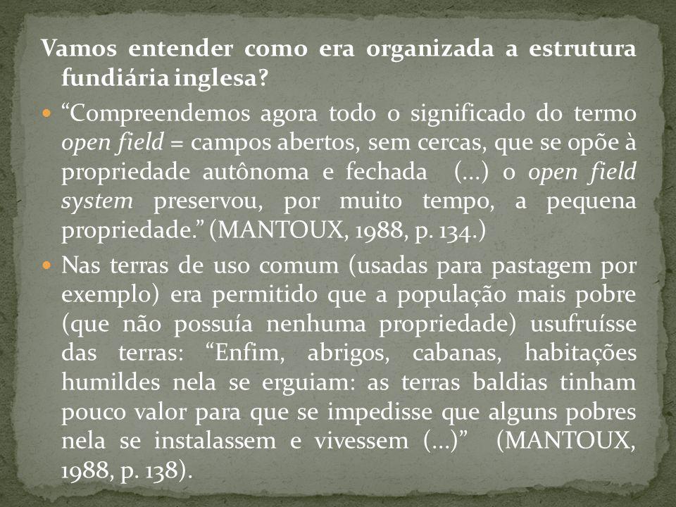 Vamos entender como era organizada a estrutura fundiária inglesa
