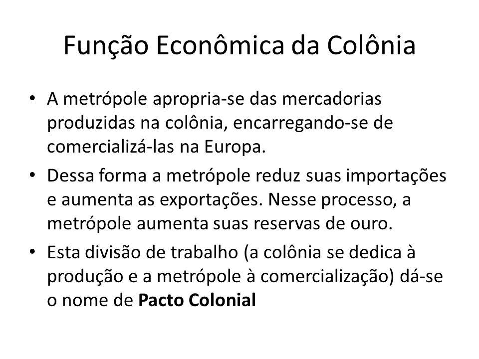Função Econômica da Colônia