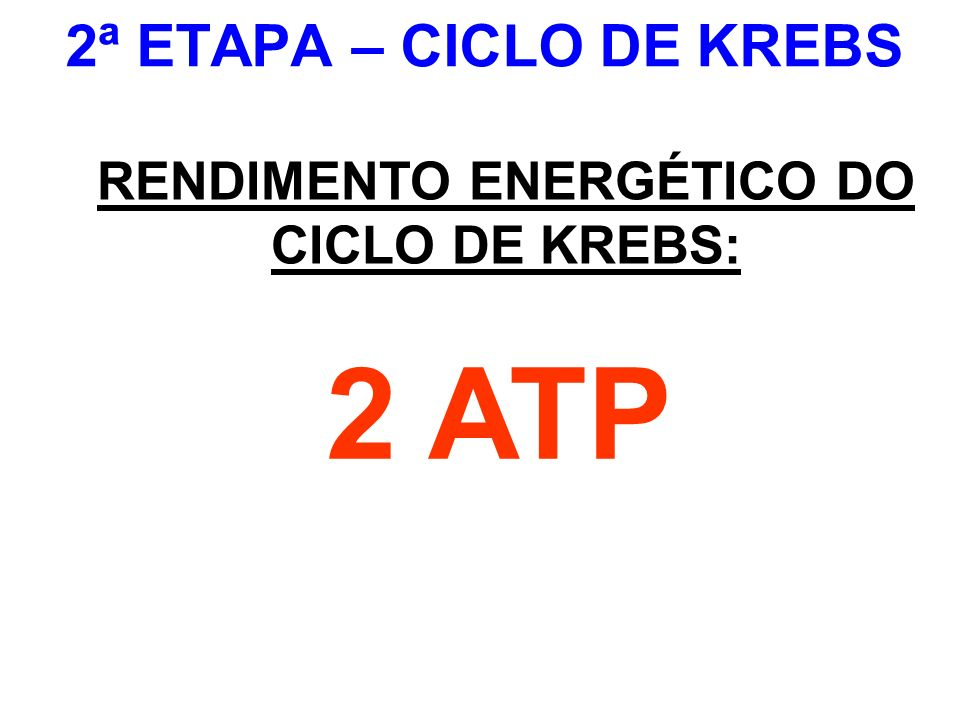 RENDIMENTO ENERGÉTICO DO CICLO DE KREBS: