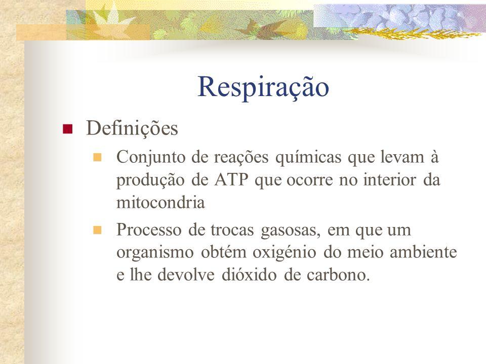 Respiração Definições