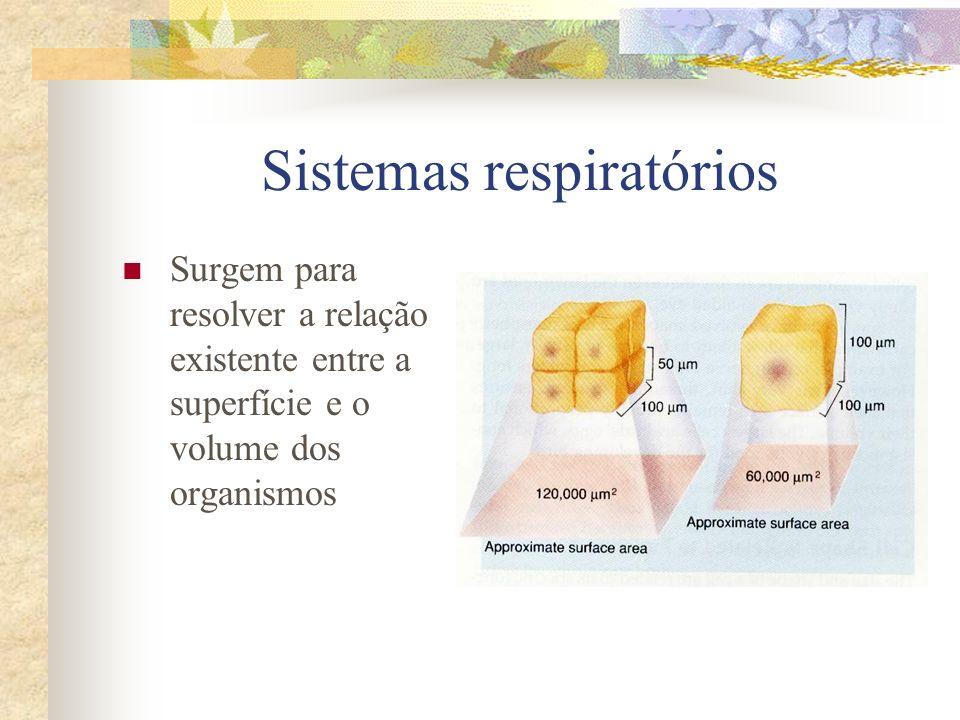 Sistemas respiratórios