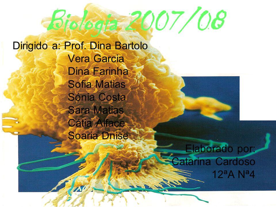Biologia 2007/08 Dirigido a: Prof. Dina Bartolo Vera Garcia
