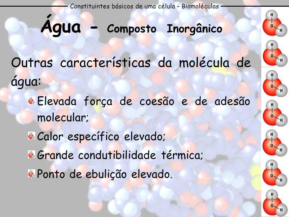 Água - Composto Inorgânico