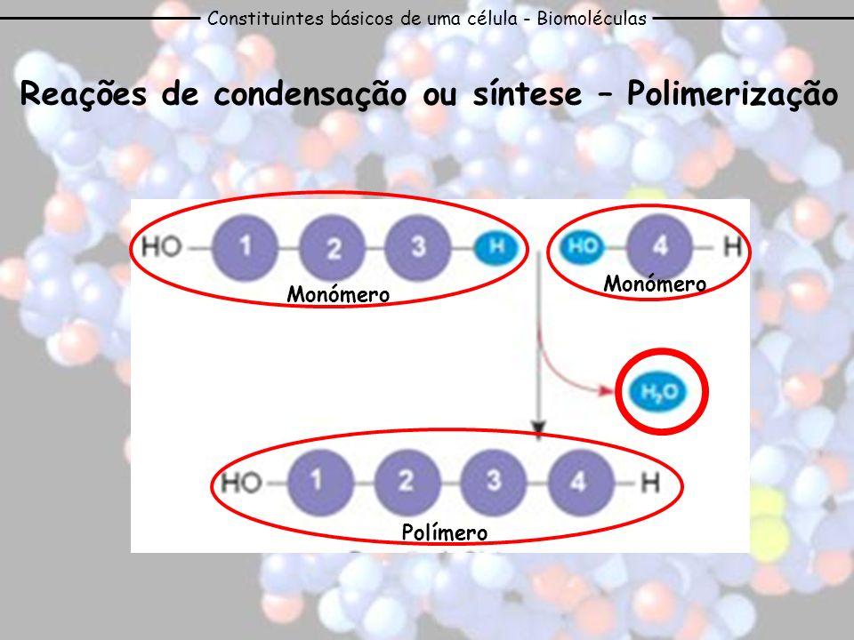 Reações de condensação ou síntese – Polimerização