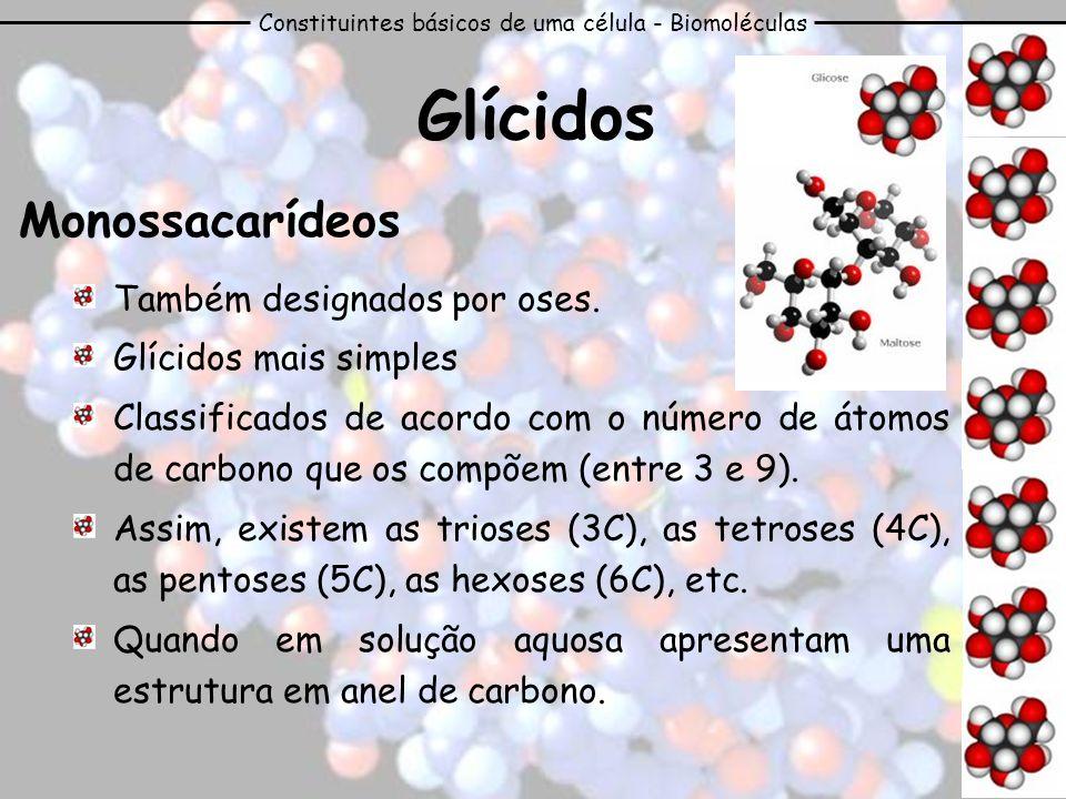 Constituintes básicos de uma célula - Biomoléculas