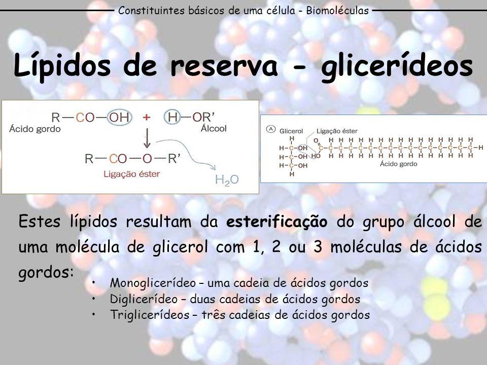 Lípidos de reserva - glicerídeos