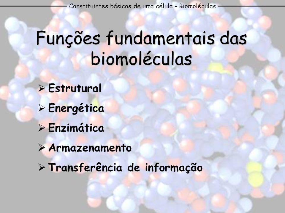 Funções fundamentais das biomoléculas