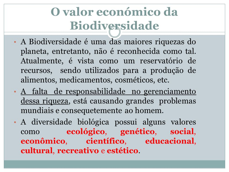O valor económico da Biodiversidade