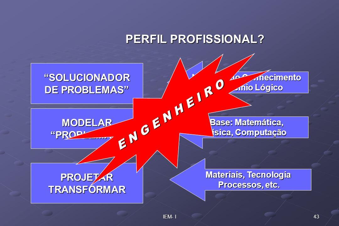 PERFIL PROFISSIONAL E N G E N H E I R O SOLUCIONADOR DE PROBLEMAS