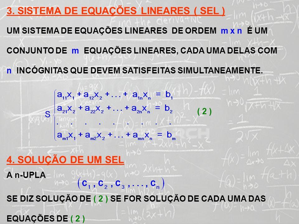 3. SISTEMA DE EQUAÇÕES LINEARES ( SEL )
