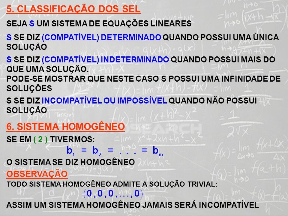 5. CLASSIFICAÇÃO DOS SEL 6. SISTEMA HOMOGÊNEO OBSERVAÇÃO