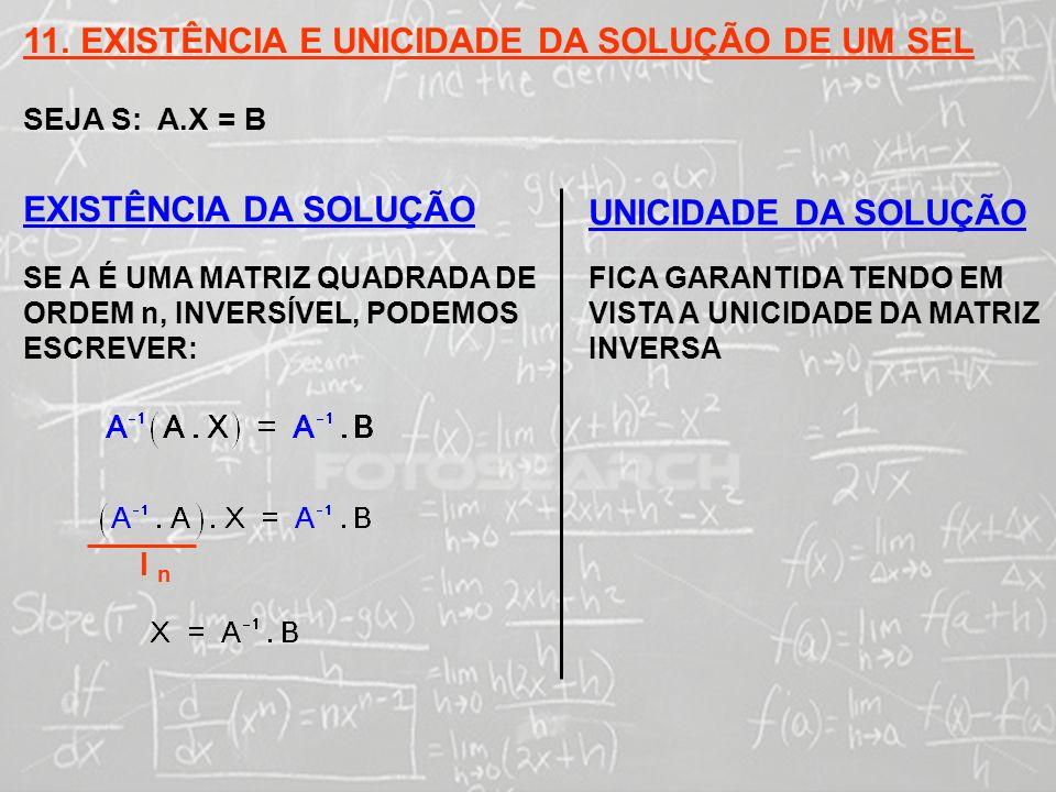 11. EXISTÊNCIA E UNICIDADE DA SOLUÇÃO DE UM SEL