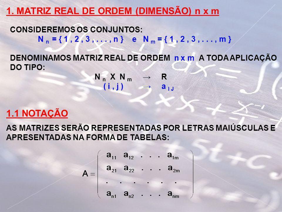 1. MATRIZ REAL DE ORDEM (DIMENSÃO) n x m