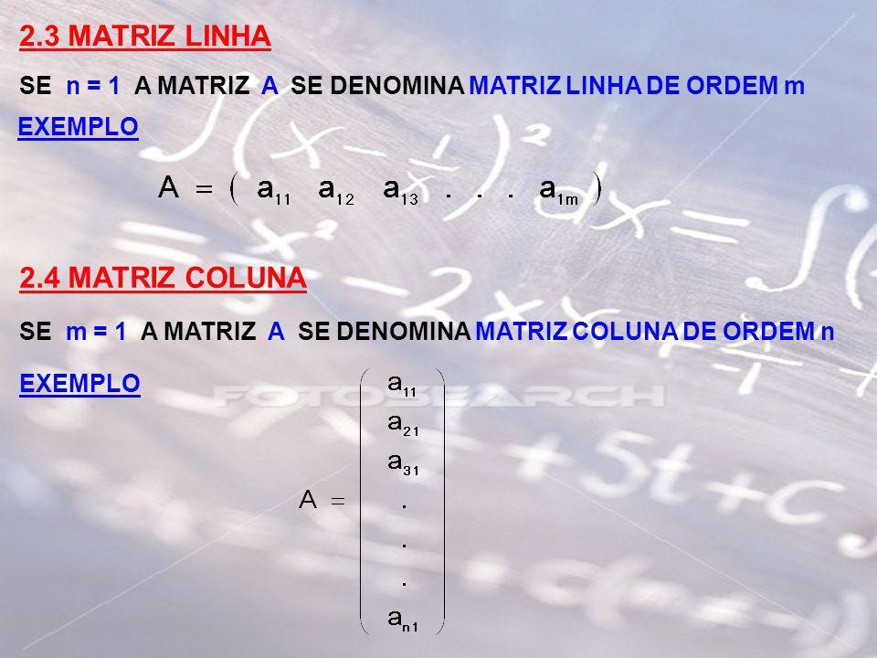 2.3 MATRIZ LINHA 2.4 MATRIZ COLUNA