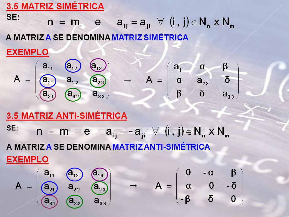 3.5 MATRIZ ANTI-SIMÉTRICA