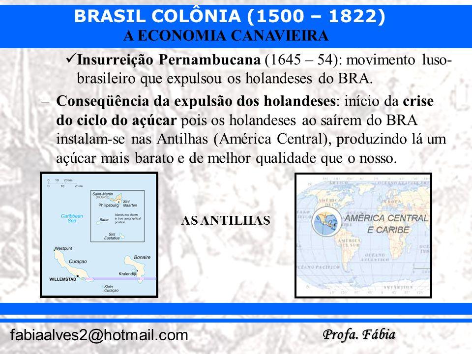 Insurreição Pernambucana (1645 – 54): movimento luso-brasileiro que expulsou os holandeses do BRA.