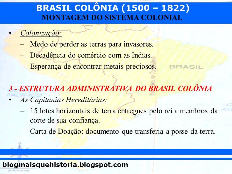 Colonização: Medo de perder as terras para invasores. Decadência do comércio com as Índias. Esperança de encontrar metais preciosos.