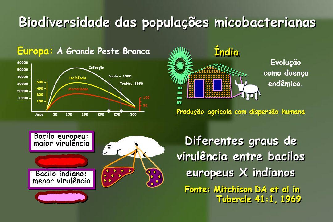 Biodiversidade das populações micobacterianas