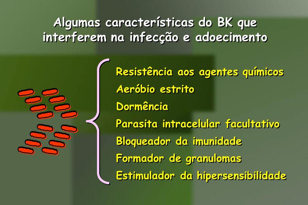 Algumas características do BK que interferem na infecção e adoecimento
