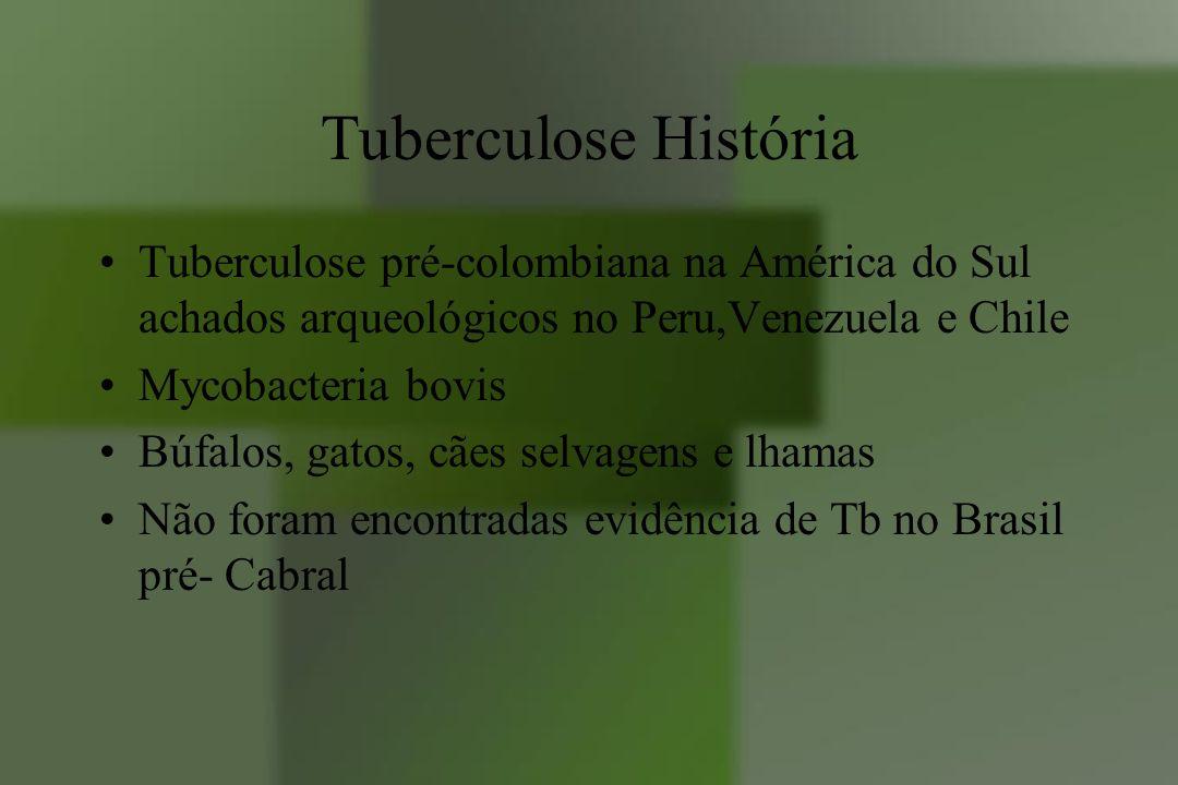 Tuberculose História Tuberculose pré-colombiana na América do Sul achados arqueológicos no Peru,Venezuela e Chile.