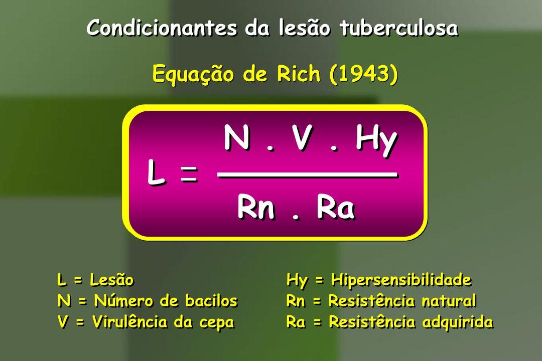 Condicionantes da lesão tuberculosa